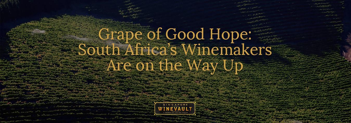 Grape of Good Hope