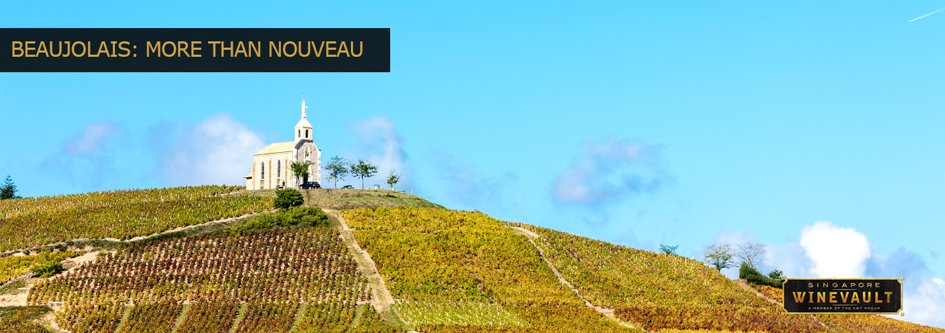 Beaujolais Header