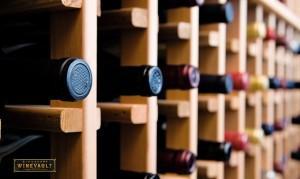 Wines You Need
